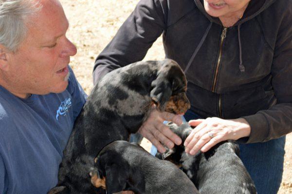 Barry Goldman & wife CXA pups