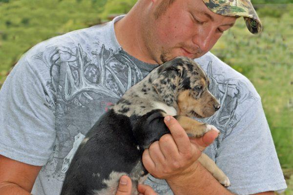 Beau stewart pup in strong hands