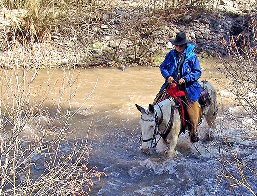 Dr. Jim crossing river on a mule