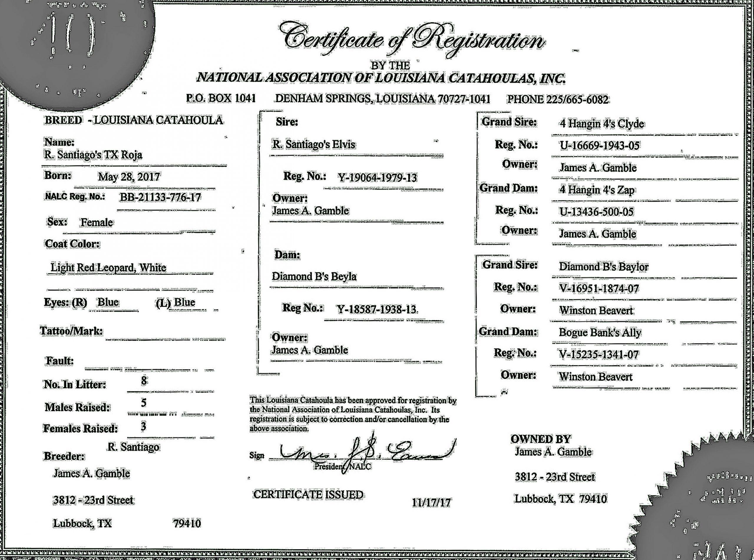 Rancho Santiago's TX Roja Registration